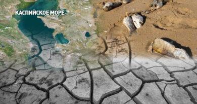 Правда ли Каспию грозит обмеление: мнения экспертов